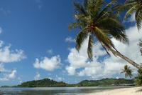 quipe de plong e Resorts-Kosrae Nautilus Micron sie