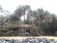Daltons banane Guesthouse