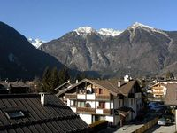 Apartment flat - Pinzolo