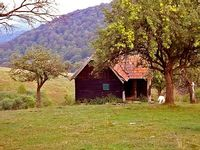 Carpathian log cabin holidays - a good choice for a break from civilization