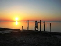 Bay Front 1 BR 1 BA Directly on Tampa Bay with Dock