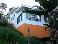 HOUSE at the feet of papayas