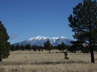 Sahalie Mountain Log Cabin at 7300 feet and Close to Heaven