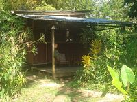 Caribbeanstyle wooden house in lush garden 150m from the beach