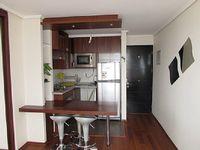 Apartment in Santiago 1 bedroom 1 bathroom sleeps 3