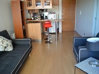 Apartment in Providencia 1 bedroom 1 bathroom sleeps 3