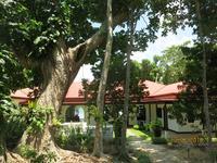 Karibu - Welcome in Swahli