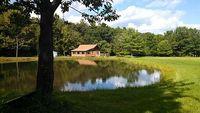 Charming Cabin Sleeps 11 fishing pond Pet friendly near Keuka wineries