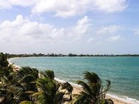 Dog-friendly oceanfront condo right in town w private beach tranquility