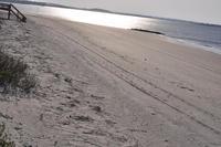 TYBEE ISLAND BEACH SAVANNAH 999 00 Week