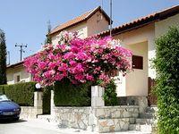 3 Bedroom Villa with Private Pool in Pissouri