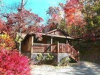 1 Bedroom 1 Bath Cabin Sleeps 4