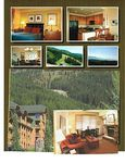 AMAZING VIEW ON BIG MOUNTAIN WITH SKI IN SKI OUT ACCESS DELUXE ONE BEDROOM