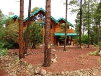 Luxury Log Home near Golf Fish Hike Ski Casino WiFi