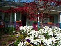 Blue Ridge European art cottage