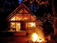 Most Popular Rental at Lake Cushman-Cozy and Comfy Cabin in the Woods