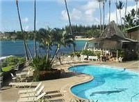 Napili Shores- Immaculate Hawaiiana 1 Bedroom- 165 Night