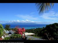 Far Tevanaki - Tahiti