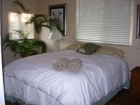 1 BEDROOM - GREAT CLIMATE LOCATION NEAR BEST KOHALA COAST BEACHES