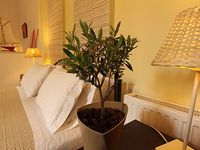EXCELLENT VALUE FOR MONEY APARTMENTS IN THE CENTER OF THE ISLAND