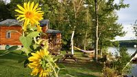1400 Sq Ft Waterfront Log Home with 3 Bedrooms 2 Bathrooms Great Amenities