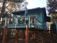 Ashley Sea House proximit de la plage aire de jeux de la nourriture des boissons et des sports nautiques