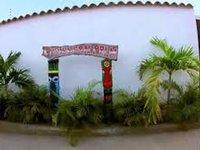 Posada Caribbean Palm