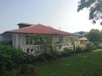 Maison traditionnelle Cayenne